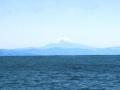 430     D. Patrykus   Mt. Fujiama 1954
