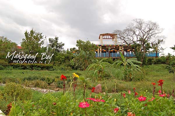 012 0007 Tropical Paradise